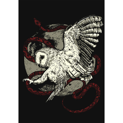 product photo of Barn Owl art print
